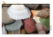 Petoskey Stones Lv Carry-all Pouch