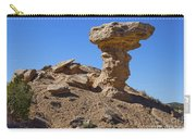 Petrified Camel Carry-all Pouch
