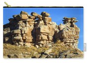 Petrified Forest Rock Formations Carry-all Pouch
