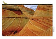 Petrified Sand Dunes The Wave Carry-all Pouch