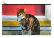 Pets - Tabby Cat By Red Door Carry-all Pouch
