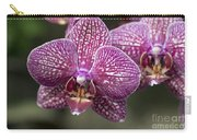 Phalaenopsis Helen Alice Mary 2220 Carry-all Pouch