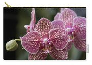 Phalaenopsis Helen Alice Mary 2346 Carry-all Pouch
