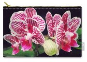 Phalaenopsis Orchid Taida Little Zebra  Carry-all Pouch