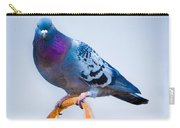 Pigeon On Sunflower Carry-all Pouch