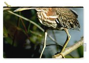 Pigeon Toed Heron Carry-all Pouch