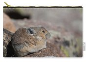 Pika In The Sun Carry-all Pouch
