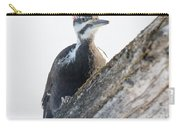 Pileated Woodpekcer Carry-all Pouch
