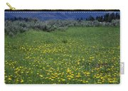 1a9210-pilot Peak And Wildflowers Carry-all Pouch