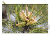 Pine Catkins Carry-all Pouch