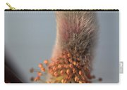 Pink And Grey Pussy Willow In Bloom Carry-all Pouch