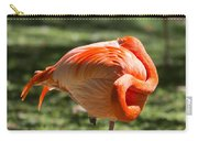 Pink And Orange Ball Carry-all Pouch