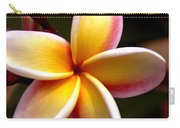 Pink And Yellow Plumeria Carry-all Pouch