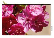 Bee Flying Pink Blossoms 031015a Carry-all Pouch