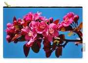Pink Blossoms Closeup 031015ab Carry-all Pouch