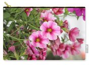 Pink Curtain Carry-all Pouch