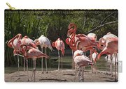 Pink Falmingos At The San Diego Zoo Carry-all Pouch