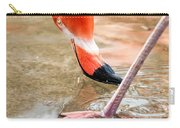 Pink Flamingo At A Zoo In Spring Carry-all Pouch