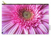 Pink Gerbera Daisy Close Up Carry-all Pouch