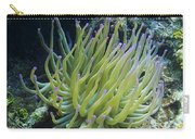 Pink Tipped Giant Sea Anemone Carry-all Pouch