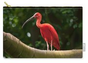 Pink Tropical Bird Carry-all Pouch