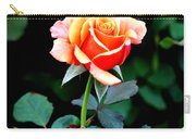 Pinkish Peach  Carry-all Pouch