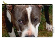 Pit Bull - 2 Carry-all Pouch