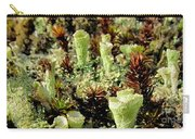 Pixie Cup Lichenscape Carry-all Pouch