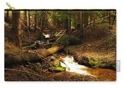 Placer Creek Carry-all Pouch
