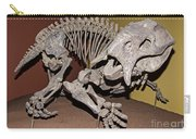 Placerias Fossil Carry-all Pouch