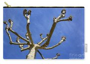 Plane Tree Carry-all Pouch