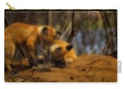 Play Time Carry-all Pouch by Thomas Young