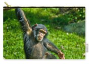 Playful Chimp Carry-all Pouch