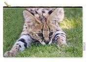 Playful Serval Carry-all Pouch