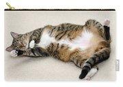 Please Rub My Tummy Carry-all Pouch