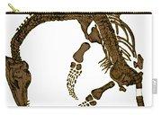 Pleisiosaurus, Mesozic Marine Reptile Carry-all Pouch