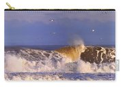 Plum Island Waves Carry-all Pouch