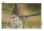 Plumbeous Vireo Begging Arizona Carry-all Pouch by Tom Vezo