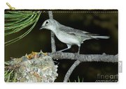 Plumbeous Vireo With Four Chicks In Nest Carry-all Pouch