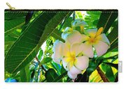 Plumeria Beauty Carry-all Pouch