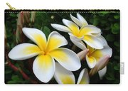 Plumeria In The Sunshine Carry-all Pouch