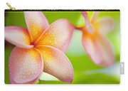 Plumeria Pastels Carry-all Pouch