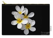 Plumerias Isolated On Black Background Carry-all Pouch