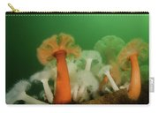 Plumose Anemone In Puget Sound Carry-all Pouch