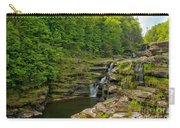 Poconos Ledges Waterfall Carry-all Pouch