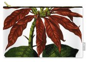 Poinsettia A Traditional Christmas Plant Vintage Poster Carry-all Pouch