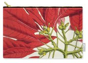 Poinsettia Pulcherrima Carry-all Pouch by WG Smith