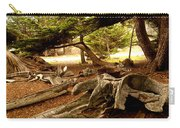 Point Lobos Whalers Cove Whale Bones Carry-all Pouch by Barbara Snyder