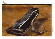 Poison Dart Frog Portrait Amazonian Carry-all Pouch