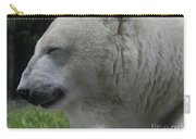 Polar Bear 4 Carry-all Pouch